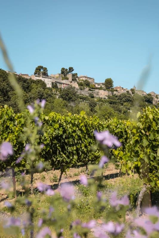 villages perchés et vignobles Luberon