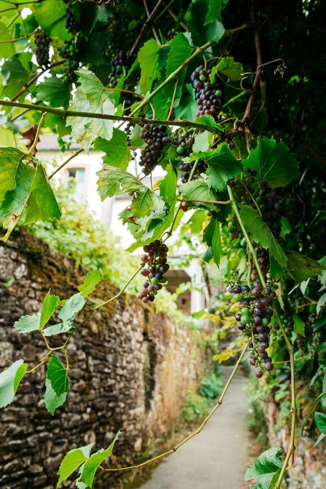 visiter les jardins de Vitré Bretagne