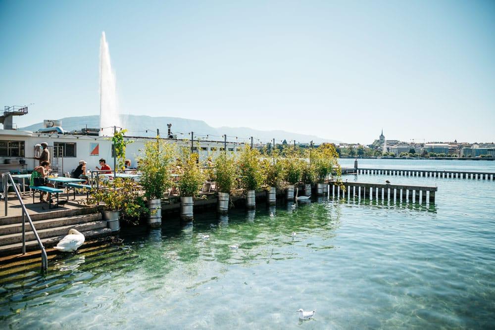 week-end nature à Genève Bains des Pâquis