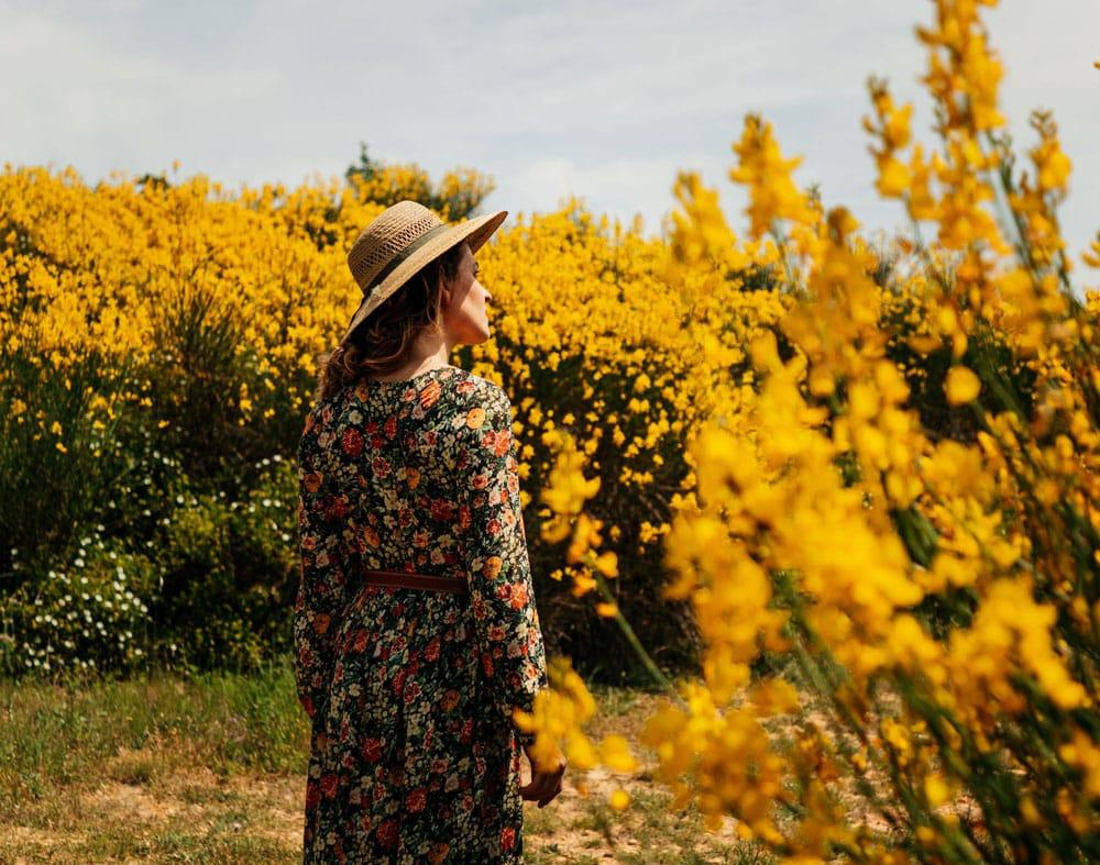 promenade entre les vignobles de Beaucaire